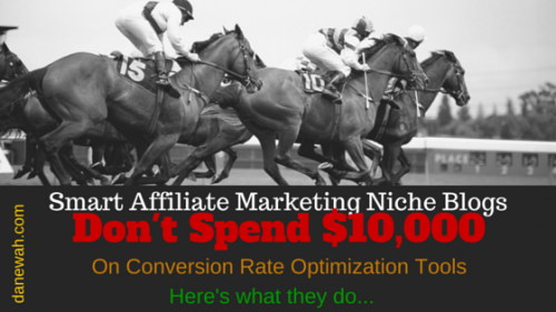 Affiliate Marketing Niche Blogs Now Getting Free Premium Licenses From PtEngine