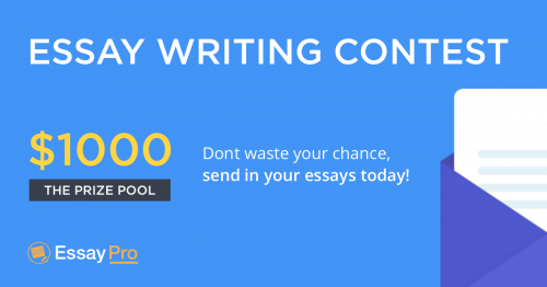 Essay writing service news