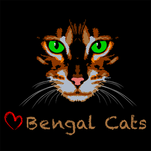 BengalCats.co Named BlogPaws 2017 Pet Blogging and Social Media Awards Finalist