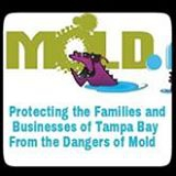 Tampa Mold Removal and Testing Firm TampaBayMold.net Launches YouTube Channel