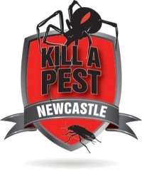 Newcastle Pest Control Cockroach Termite & Rodent Exterminator Services Launched