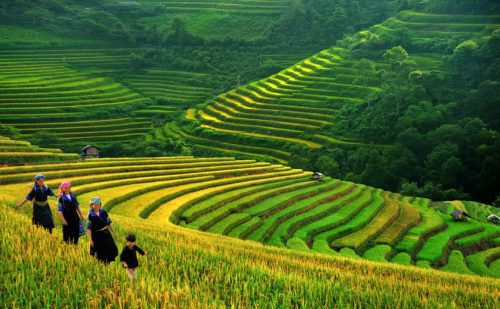 6 Greatest Trekking Destinations For US Travelers In Vietnam According To Greenvisa