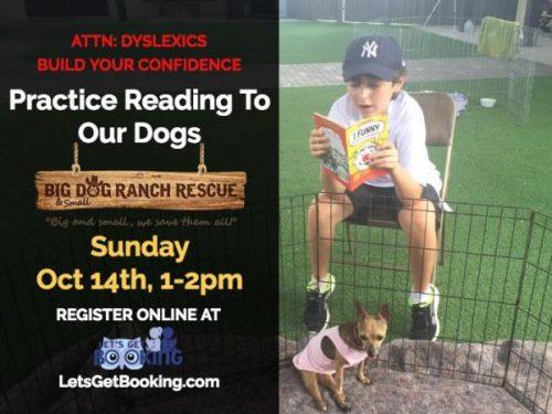 Palm Beach Florida Dyslexia Confidence Building & Reading To Dog ...
