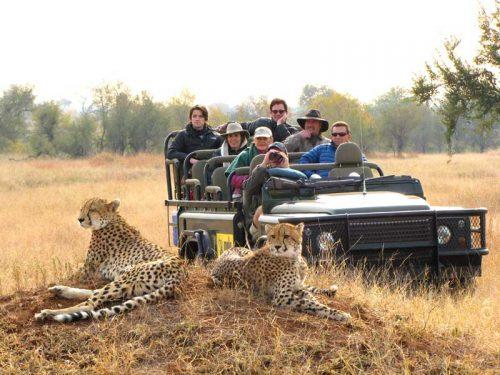 Luxury Safari Tourism에 대한 이미지 검색 결과